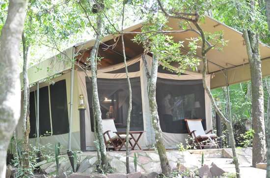 Mara Intrepids Luxury Tented Camp: Tent Nr. 4 Outside
