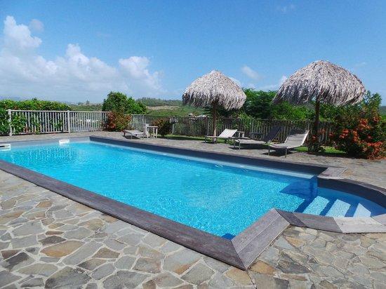 Hotel Plein Soleil : piscine commune