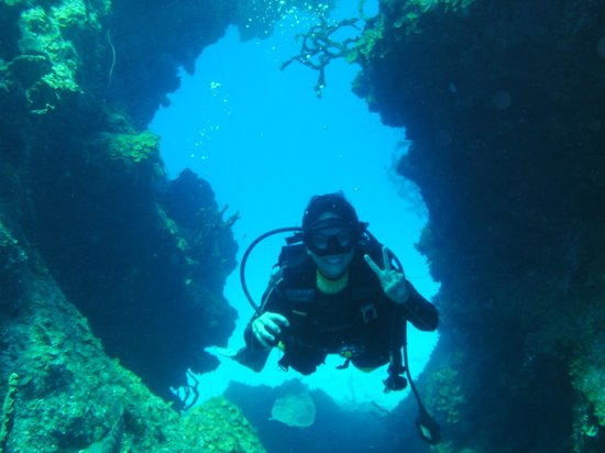 Ocean Fox Cotton Bay: happy diver