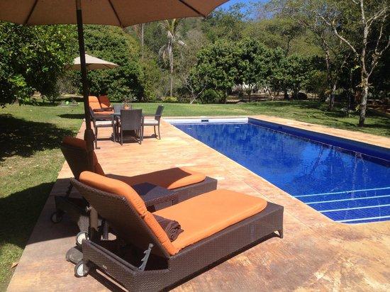 Villa Azalea - Luxury B&B : pool area