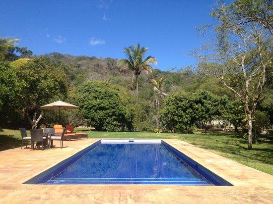 Villa Azalea - Luxury B&B : pool and green areas