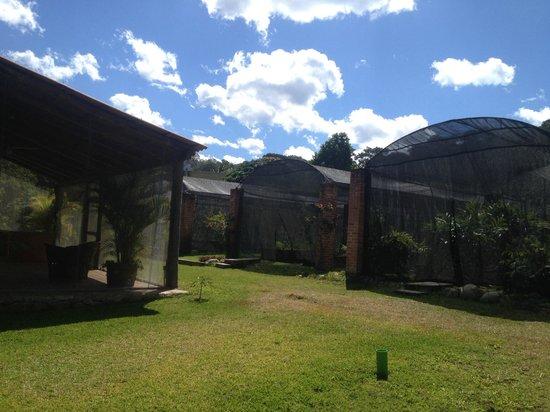 Villa Azalea - Luxury B&B: organic farm