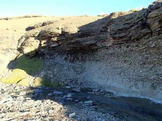 Safari Experience - Patagonia Profunda: Fósiles marinos