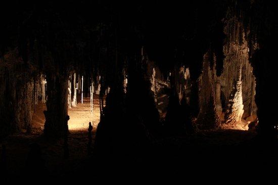 Marakoopa Cave: Cool stuff