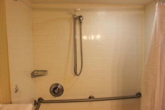 The Read House Historic Inn And Suites: Shower