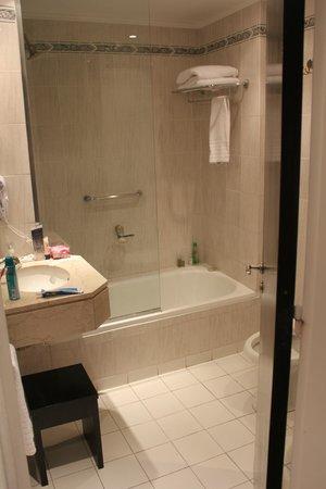 Rochester Classic Hotel: Baño