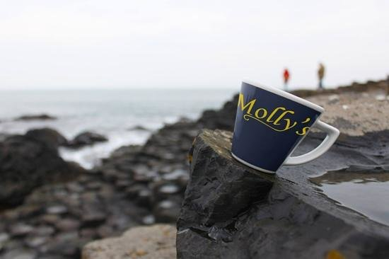 Molly's: would you be inclined for a cup of the best coffee !
