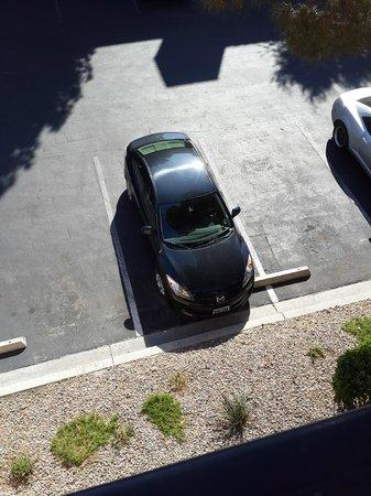 Desert Rose Resort: Парковка перед окнами