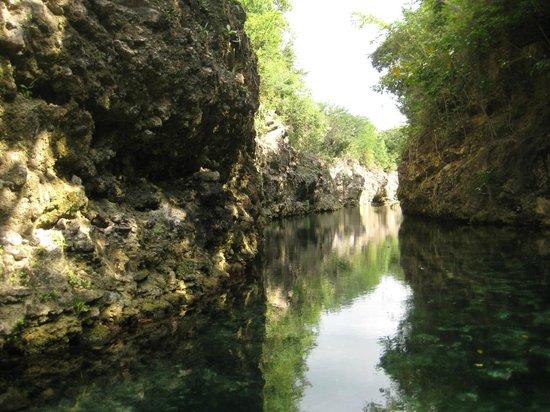Fairmont Mayakoba: Nature Tour