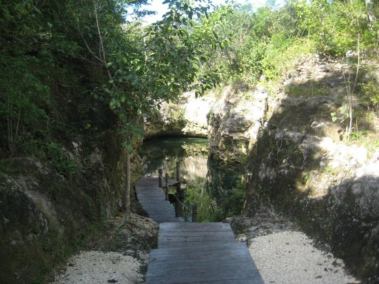 Fairmont Mayakoba: Nature trail to cenote