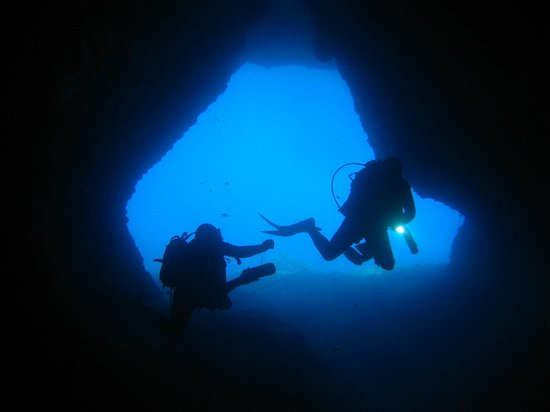 Paradise Dive Center: cave of the elephants