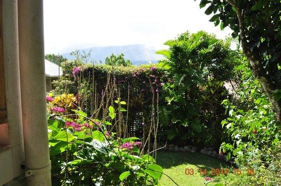 La Montana y el Valle Coffee Estate Inn: Balcony view
