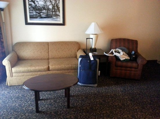 Hampton Inn & Suites Mobile/Downtown : Pull Out Couch