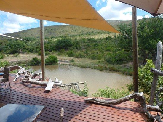 Shamwari Game Reserve Lodges : Restaurante