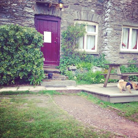 Tarr Farm Inn: Our pups seemed at home here!