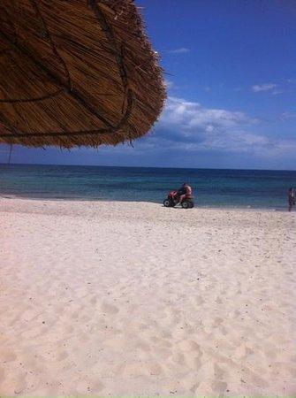 Royal Kenz Hotel Thalasso & Spa : Beach