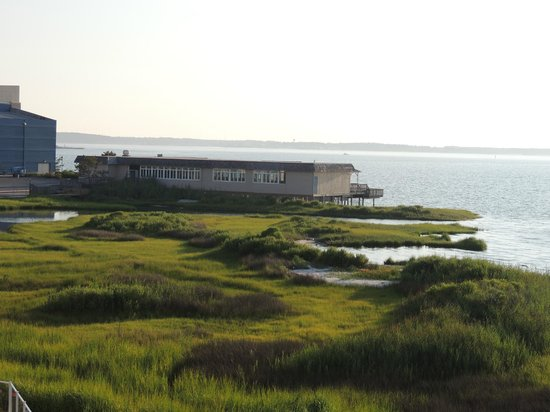 Hampton Inn & Suites Ocean City : Other side of our view