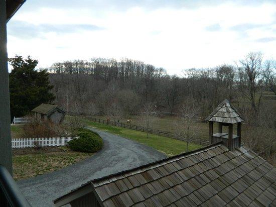 Pheasant Run Farm: View from the porch.