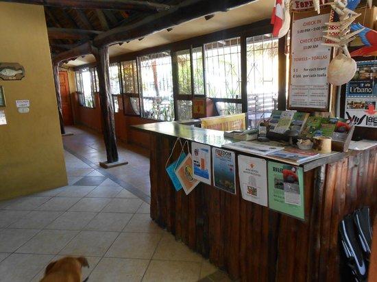 El Dorado Hostel: Reception