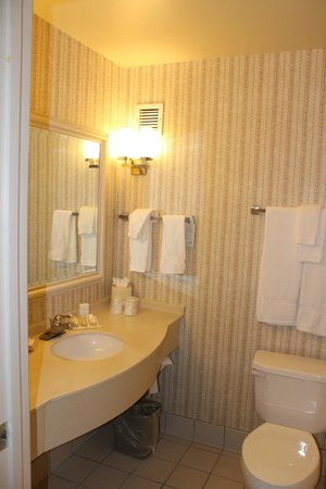 Hilton Garden Inn Minneapolis Eagan : Eagan, Hilton Garden Inn, Room #321, Bath