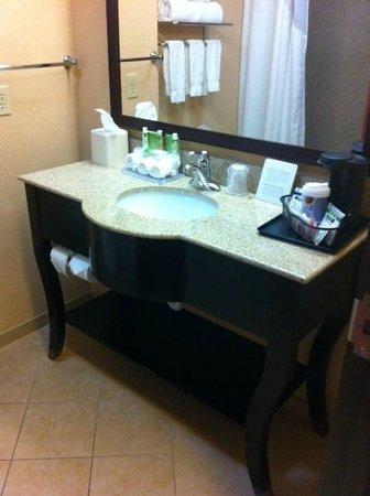 Holiday Inn Express Hotel & Suites Ennis : Bathroom sink in granite