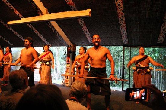 Maori-Dorf Tamaki: The show before dinner