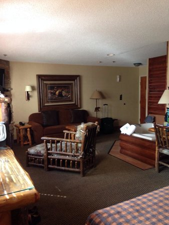 Stoney Creek Inn: Themed suite