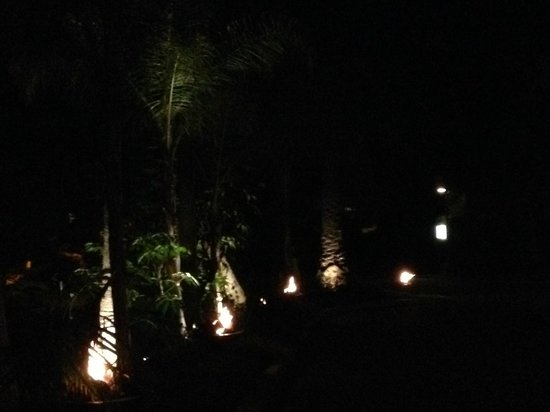 Hotel La Jolla, Curio Collection by Hilton: The Entrance with lighted trees and gas fires (photo doesn't do justice but it is beautiful)