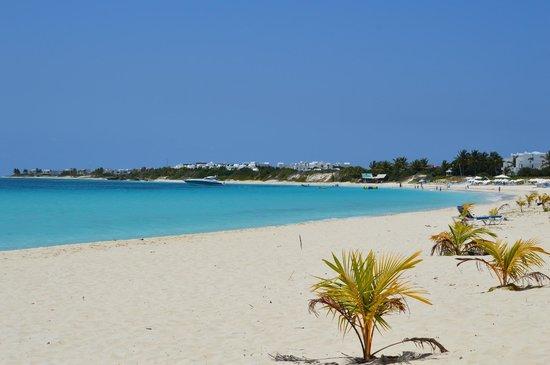 Rendezvous Bay Beach : Rendezvous