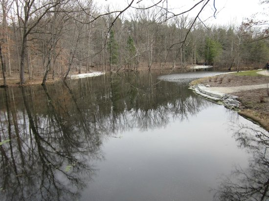 Oak Openings Preserve: Mallard Lake