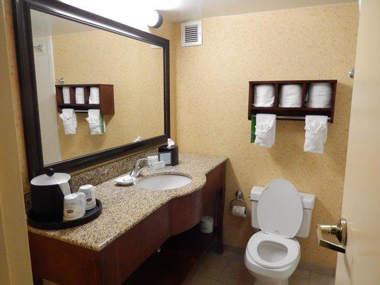 Hampton Inn Raleigh/Cary: View of the bathroom