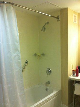 Sheraton Baltimore Washington Airport - BWI: shower is small