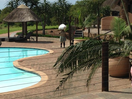 Zulu Nyala Game Lodge: pool at game lodge