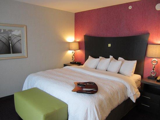 Hampton Inn & Suites Buffalo Airport: Room 429