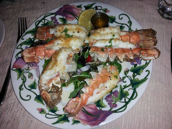 Rauda Husid: Lobster dinner