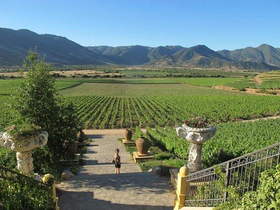 Vina Santa Cruz: From the entrance of the villa