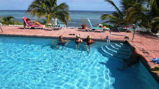 Turtle Nest Inn : Guest Friendships Start at Pool Side