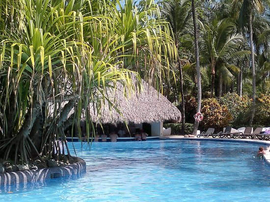 Paradisus Punta Cana: piscina