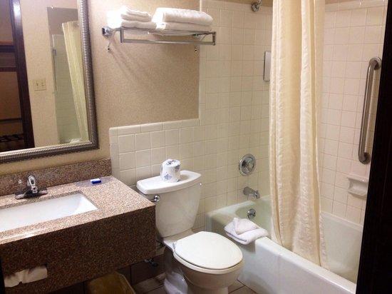 BEST WESTERN Fox Valley Inn: Bathroom