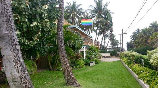 Maui Sunseeker LGBT Resort: Streetfront of Maui Sunseeker