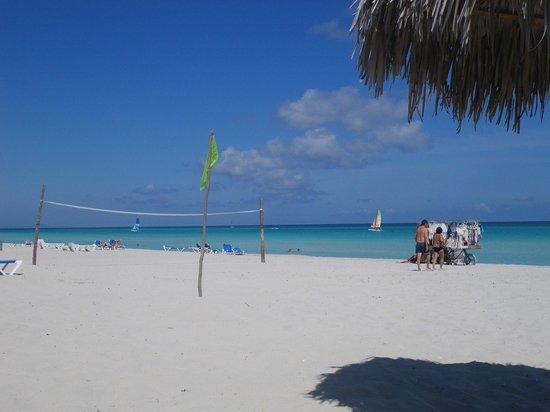 Sol Sirenas Coral Resort: Playa