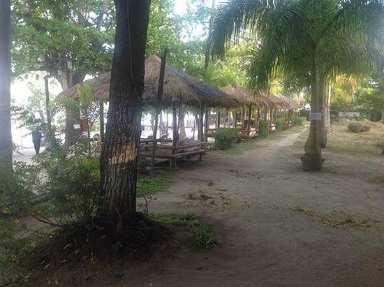 Precious Garden Samal : Cottages in the beachfront