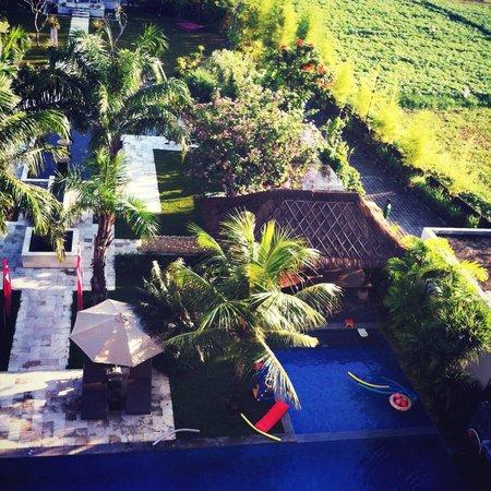 favehotel Umalas : Ricefield view