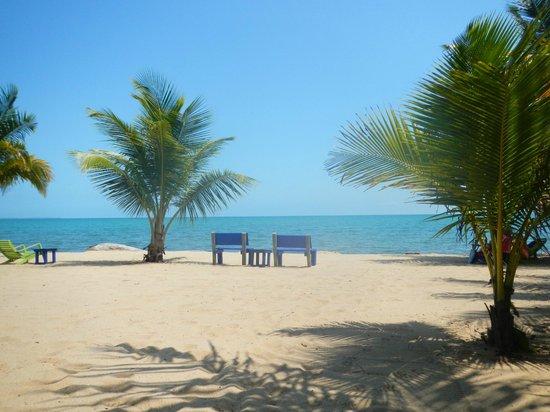 Tipple Tree Beya : Front yard & Beach at Cocoplum