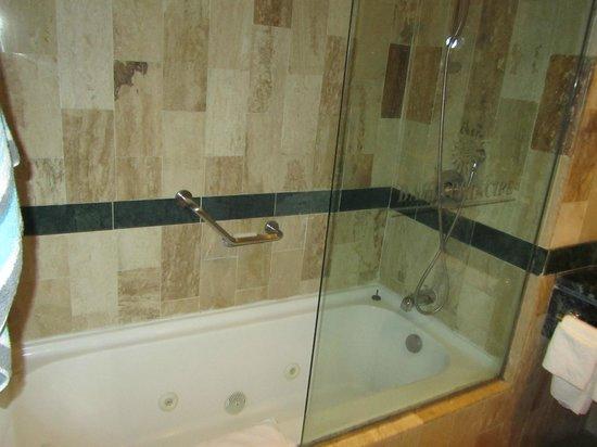 Grand Bahia Principe Cayacoa: Bathroom in Seaview Room