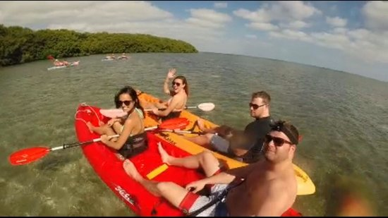 Danger Charters: Kayaking with Friends