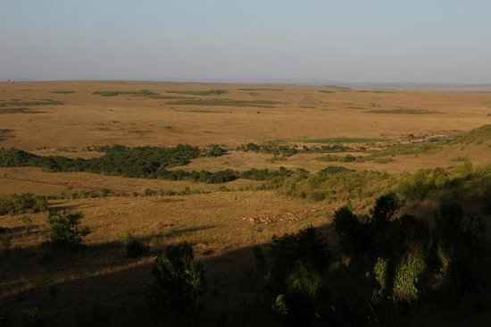 Mara Serena Safari Lodge: View from the room