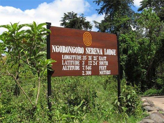 Ngorongoro Serena Safari Lodge: Location information
