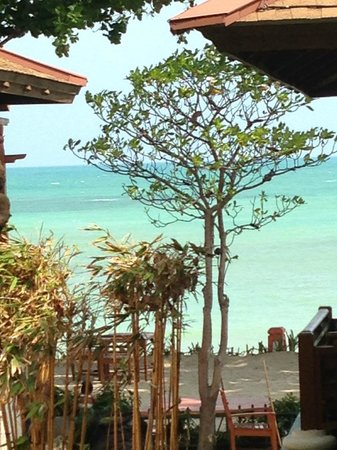 The Briza Beach Resort Samui : View from our pool