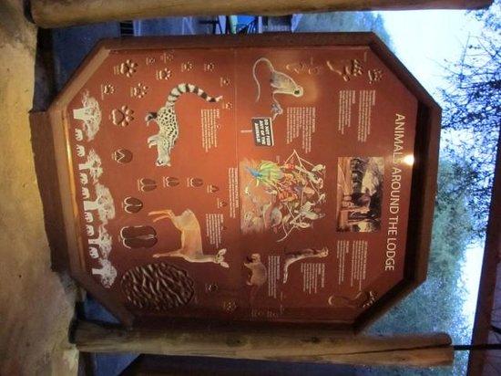 Tarangire Safari Lodge : Helpful information